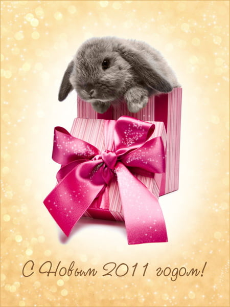 новогодние открытки с кроликом