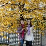 fotosessiy_osenu_idei_i_obrazy_05