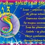 otkritki_god_zmei_25