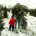 idei_dlya_novogodney_fosessii_semeynoy_42